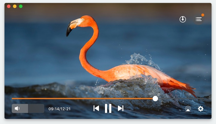 Elmedia Player youtube video save
